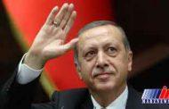 درخواست اردوغان از نخبگان ترکیهای خارجنشین برای بازگشت به وطن