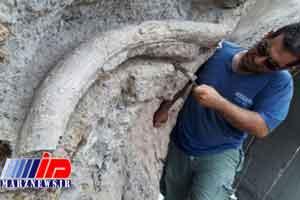 فسیل 20 میلیون ساله در استان اردبیل کشف شد