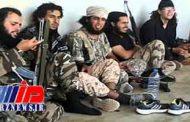 احتمال بازگشت داعش در عراق و سوریه