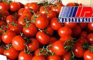ممنوعیت صادرات گوجه فرنگی؛ تصمیمی که نوش دارو پس از مرگ سهراب است