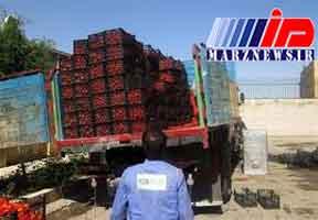 توقیف ۴ کامیون گوجه فرنگی قاچاق در مرز شلمچه