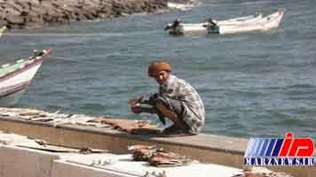 امارات منابع شیلاتی یمن را سرقت می کند
