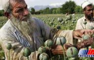 مواد مخدر و تروریست چالش افغانستان ، منطقه و جهان
