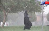 توفان مدارس بوشهر، دیلم و دشتی را تعطیل کرد