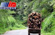 کشف ۱۰ تن چوب جنگلی قاچاق در ساری