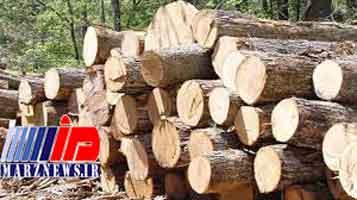 کشف ۲۰ تن چوب جنگلی قاچاق