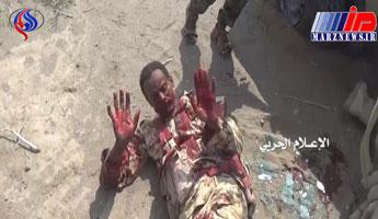 گرفتار شدن نیروهای امارات در غرب یمن
