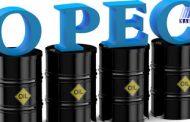 پشت پرده خروج قطر از سازمان اوپک/ دستور کار آمریکا و روسیه برای تضعیف اوپک