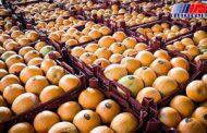 کریدور صادرات مرکبات به حوزه خلیج فارس و عراق باز می شود