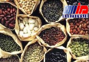 صادرات ۱۸ نوع ماده غذایی ممنوع شد