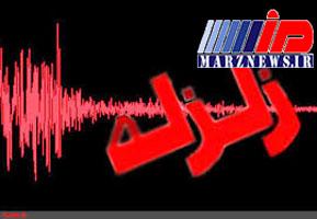 زلزله ۴.۶ ریشتری بوشهر را لرزاند
