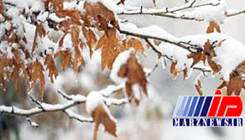 امروز «برف» کدام استانها را سفیدپوش میکند؟