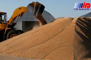 روسیه به سوریه ۲۰۰ هزار تن گندم می فروشد
