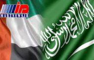 ارز رمزنگار مشترک عربستان و امارات راهاندازی شد