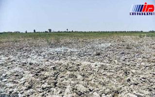 خشکسالی ۲۵۰۰ میلیاردتومان به سیستان وبلوچستان خسارت وارد کرد