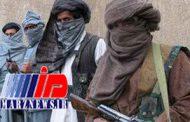 طالبان قانون اساسی افغانستان را مانع صلح خواند