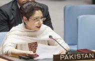 اسلام آباد: تنشهای میان هند و پاکستان میتوانند بر روند صلح افغانستان تاثیر بگذارند