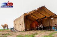 ۴۰ هزار راس دام به مراتع امن گلستان منتقل شد