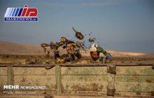 محصول چغندرکاران خوزستان در آستانه نابودی