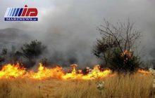 ۹۰ نقطه مستعد آتشسوزی در مراتع استان ایلام شناسایی شد