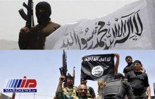 دور تازه درگیریهای طالبان و داعش در شرق افغانستان