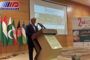 ایران در ارائه خدمات به گردشگران سلامت سرآمد منطقه است