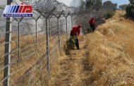 آتش سوزی جنگل های مرزی مریوان مهار شد