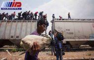 ۵۱ مهاجر در مرز مکزیک با آمریکا بازداشت شدند