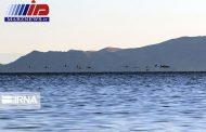 شوری آب دریاچه ارومیه نصف شد