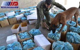 ۱۵ تن انواع مواد مخدر طی ۸۹۴ فقره عملیات کشف شد
