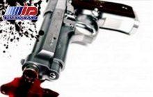 قاتل سریالی شهرستان دشتی دستگیر شد