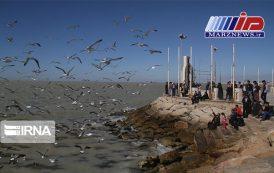گردشگری دریایی در ساحلی غربی بوشهر رونق مییابد