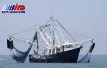 جزئیات توقیف ۷ کشتی صید ترال در جاسک