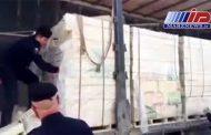 پشت پرده محموله بزرگ قاچاق مرغ با پوشش آجر به مقصد عراق