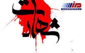 شهادت مرزبان کرمانشاهی در مرز پاوه