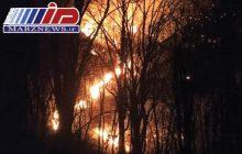وقوع آتش سوزی شدید در جنگل های آقچای جمهوری آذربایجان